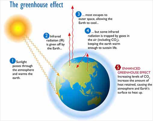 effects-of-greenhouse-gas