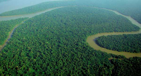 region-of-amazon-rainforest