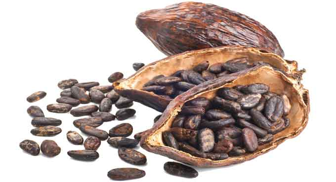 pods-with-cocoa-beans