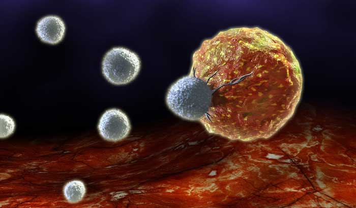 T-cell-attacking-cancerous-cell