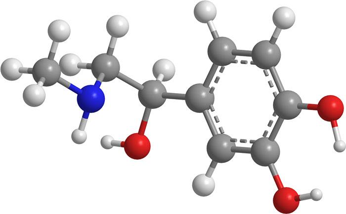 organic-molecule