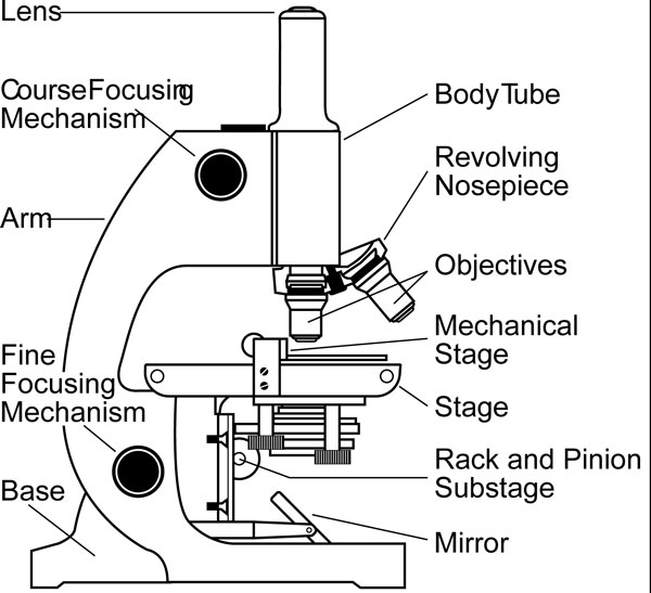 parts-of-a-microscope